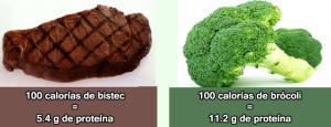 brocoli protein