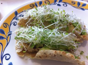 tacos de setas